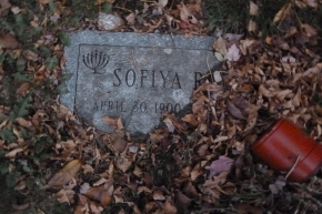 """The Forward: """"Sofiya Romm's Journey From Russia to a Barely Findable AmericanGrave"""